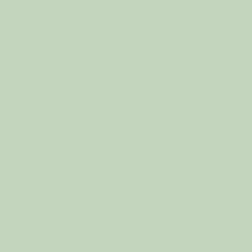 Fog Green variant