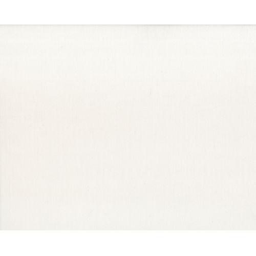 Cushion: White Canvas variant