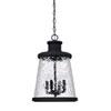 This item: Tory Black Four-Light Outdoor Hanging Lantern