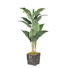 This item: Banana Tree in Rustic Wooden Planter Box with Rope Handles