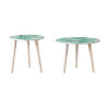 This item: Natural Round Side Table with Succulent Table Top, Set of 2