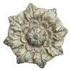 This item: Natural Florette Wall Décor