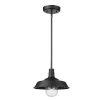 This item: Burry Matte Black One-Light Outdoor Pendant