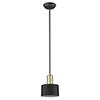 This item: Ingo Matte Black Five-Inch One-Light Mini Pendant