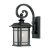 This item: Somerset Matte Black Small 14.25-Inch Wall Lantern with Frosted Clear Seeded Glass