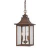 This item: St. Charles Medium Hanging Lantern with Copper Patina Finish