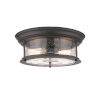 This item: Sonna Bronze Two-Light Flush Mount with Transparent Seedy Glass