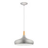 This item: Sabinar Brushed Nickel 16-Inch One-Light Pendant