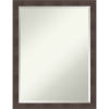 This item: Whiskey Brown 20W X 26H-Inch Decorative Wall Mirror