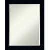 This item: Tribeca Black 22W X 28H-Inch Decorative Wall Mirror