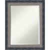 This item: Quicksilver Silver 24W X 30H-Inch Bathroom Vanity Wall Mirror