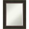 This item: Milano Bronze 24W X 30H-Inch Bathroom Vanity Wall Mirror