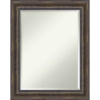 This item: Brown 23W X 29H-Inch Bathroom Vanity Wall Mirror