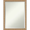 This item: Fluted Champagne 20W X 26H-Inch Bathroom Vanity Wall Mirror