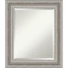 This item: Parlor Silver 22W X 26H-Inch Bathroom Vanity Wall Mirror