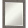 This item: Gray 19W X 23H-Inch Bathroom Vanity Wall Mirror