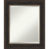 This item: Bronze 21W X 25H-Inch Bathroom Vanity Wall Mirror