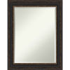 This item: Bronze 23W X 29H-Inch Bathroom Vanity Wall Mirror