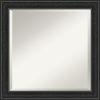 This item: Shipwreck Black 24W X 24H-Inch Bathroom Vanity Wall Mirror