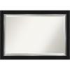 This item: Eva Black and Silver 41W X 29H-Inch Bathroom Vanity Wall Mirror