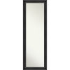 This item: Black 18W X 52H-Inch Full Length Mirror