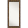 This item: Bronze 32W X 68H-Inch Full Length Floor Leaner Mirror