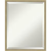 This item: Lucie Champagne 17W X 21H-Inch Decorative Wall Mirror
