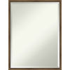 This item: Lucie Bronze 19W X 25H-Inch Bathroom Vanity Wall Mirror