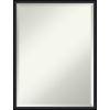 This item: Lucie Black 19W X 25H-Inch Bathroom Vanity Wall Mirror