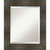 This item: Rail Brown 22W X 26H-Inch Bathroom Vanity Wall Mirror