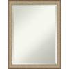 This item: Elegant Bronze 21W X 27H-Inch Bathroom Vanity Wall Mirror