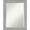 This item: Vista Brushed Nickel 23W X 29H-Inch Bathroom Vanity Wall Mirror