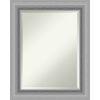 This item: Peak Brushed Nickel 24W X 30H-Inch Bathroom Vanity Wall Mirror