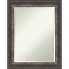 This item: Bark Brown 23W X 29H-Inch Bathroom Vanity Wall Mirror