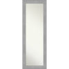 This item: Vista Brushed Nickel 19W X 53H-Inch Full Length Mirror