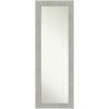 This item: Gray Frame 19W X 53H-Inch Full Length Mirror