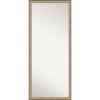 This item: Elegant Bronze 27W X 63H-Inch Full Length Floor Leaner Mirror
