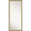 This item: Swan Silver 28W X 64H-Inch Full Length Floor Leaner Mirror