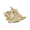 This item: Queen Conch Gold Shell Decorative Accessory