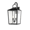 This item: Powder Coat Black 10-Inch Two-Light Outdoor Wall Sconce