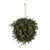 This item: Green Angel Vine Hanging Ball