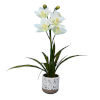 This item: White Real Touch Cymidium in Pot