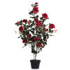 This item: Red 45-Inch Rose Plant in Pot