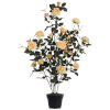 This item: Yellow 45-Inch Rose Plant in Pot