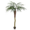 This item: Green 6-Feet Potted Pheonix Palm Tree with 545 Leaves