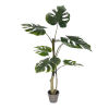 This item: Green 38-Feet Potted Grand Split Philo Tree with 7 Leaves