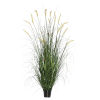 This item: Multicolor 60-Inch Foxtail Grass in Pot