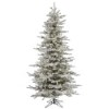 This item: Flocked White on Green Slim Sierra 4.5 Foot x 38-Inch Christmas Tree with 250 Warm White LED Lights