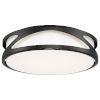 This item: Lucia Black 14-Inch LED Flush Mount