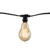 This item: Black Nostalgic Thread 25W A15 Incandescent Candelabra Base Amber 10 Pcs String Light